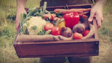 Happy farmer carrying box of veg — Stock Video