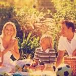 Happy family having a picnic — Stock Photo #76126631