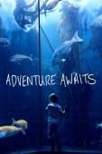 Composite image of adventure awaits — Stock Photo