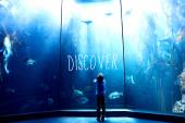 Composite image of discover — Stock Photo