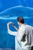 Couple taking picture of shark at aquarium — Stock Photo
