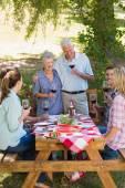 Seniors toasting with their family — Stock Photo