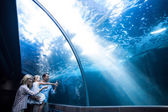 Family looking at fish in a tank — Stock Photo