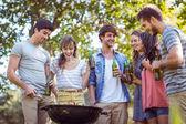 Amici felici nel parco con barbecue — Foto Stock