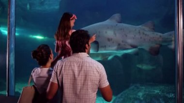 Happy family looking at fish in the tank — Stock Video
