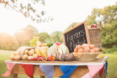 Table with locally grown vegetables — Stock Photo