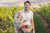 Two young happy vintners holding a basket — Stock Photo