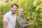Two young happy vintners — Stock Photo