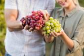 Two young happy vintners holding grapes — Stock Photo