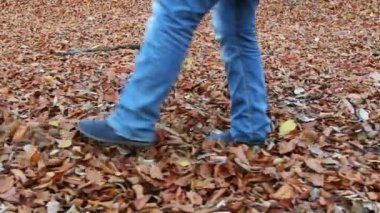 Girl playing with fallen leaves in the forest — Stock Video