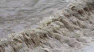 Floods — Stock Video