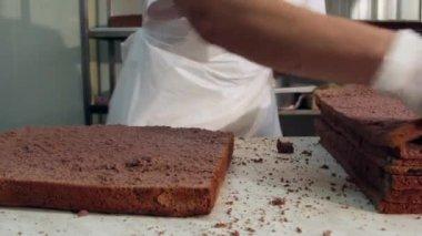 Chefs cutting chocolate cake — Stock Video