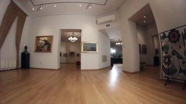 Gallery of paintings and sculpture. Dolly shot. — Wideo stockowe