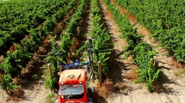 Mechanization of Vineyards — Stock Video