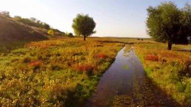 Flooded road in the Danube delta — Stock Video