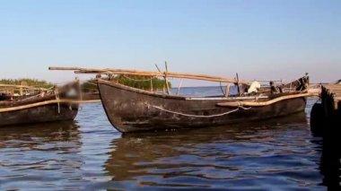Fishing port in the Danube Delta — Stock Video