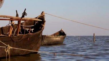 Tuna deltası'nda balıkçı limanı — Stok video