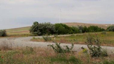 Danube Delta Rally special trial windfarm — Stock Video