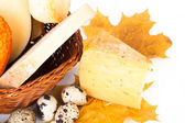 Cheese allsorts in a wicker basket on yellow autumn leaves on a  — Stock Photo
