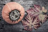 One orange pumpkin with dryl leaves on wooden textured table — Stock Photo