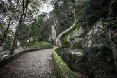 Cobblestone road to the palace foam among the rocks and trees — Stockfoto