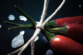 Three related twine red hot peppers on a blackboard tinted — Stock Photo