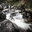 River deep in mountain forest. Nature composition. — Stock Photo #60699925