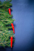 Branches of a Christmas tree decorated with chili peppers on a d — Stock Photo