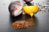 Raw fish, onion, lemon and spices on a black table — Stock Photo