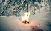 Bonfire on a snowy clearing in the woods. Toned — Стоковое фото