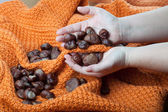 Chestnuts on a knitted orange background and in the hands — Stock Photo