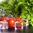 Banch of red cherry tomatos, green salad and ice cubes on black  — Stock Photo #70740341