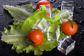 Red cherry tomatos, green salad and ice cubes on black wet table — Stock Photo