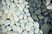 Background of black and white pebbles. Toned — Stock Photo