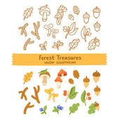 Forest treasures illustration — Stock Vector