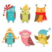 Winter owls — Stock Vector
