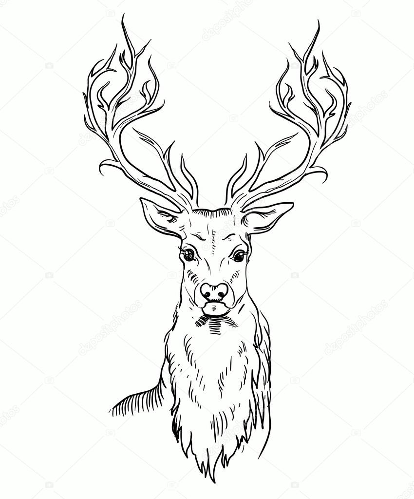 Tumblr Deer Drawing further Stock Illustration Deer Tiger Head Tattoo Psychedelic Zentangle Style Vector Illustration White Background Image60665439 additionally  together with Images Libres De Droits T C3 AAte De Cerfs  muns De Vecteur D Isolement Image36684659 likewise Deer Hunting Silhouette. on deer skull art