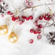 Christmas-tree balls on a branch with red berries and pine cones — Stock Photo #53317369