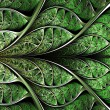 Abstract plant background, fractal illustration — Stock Photo #64706765