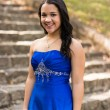 Quinceanera Dress — Stock Photo #57304193