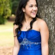 Quinceanera Dress — Stock Photo #57304281