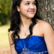 Quinceanera Dress — Stock Photo #57304285