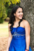 Quinceanera Dress — Stock Photo