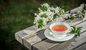 Cup of herbal tea — Stock Photo