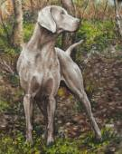Oil on canvas of a dog in a grove — Foto de Stock