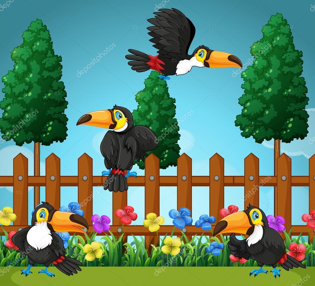Toekans vliegen in de tuin stockvector 110597458 for Vliegen in de tuin