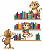 Monkeys and books — Stock Vector