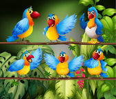 Parrots — Stock Vector