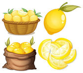 Lemon set — Stock Vector