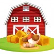 Chicken and barn — Stock Vector #52593303
